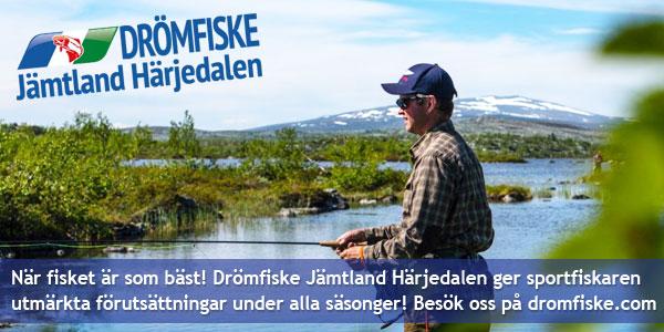 Drömfiske Jämtland Härjedalen